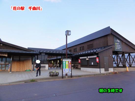 DSC03558.jpg