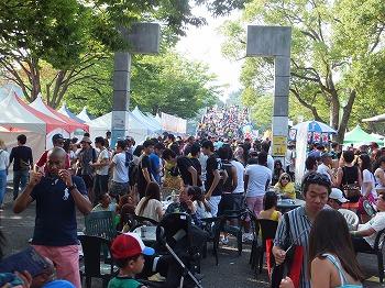 brasil-festival31.jpg