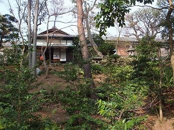 shibuya-asakura5.jpg