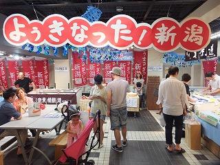 shibuya-nespace4.jpg