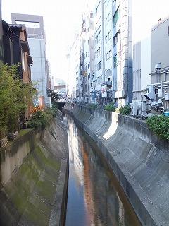 shibuya-street54.jpg