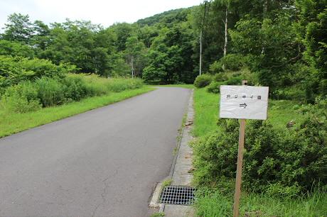 新町牧野組合のアジサイ園02(2013.7.24)