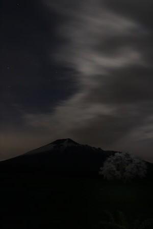 上坊牧野の一本桜13(2013.5.18)