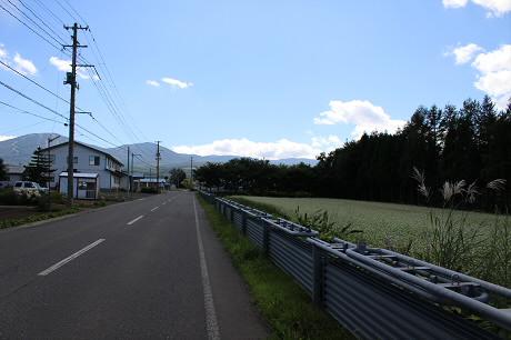 そば畑細野09(2013.8.28)