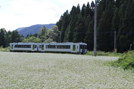 そば畑星沢09(2013.8.28)