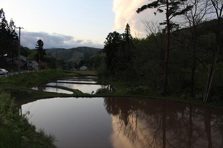 夕方田んぼのある風景18(2013.5.23)