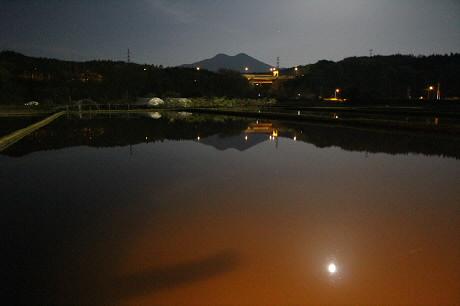 夜の水田02(2013.5.24)