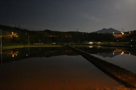 夜の水田05(2013.5.24)