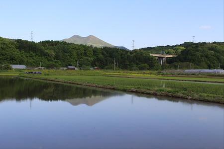 水田の水鏡09(2013.5.31)