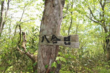 七時雨山開き43(2013.6.2)