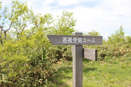 七時雨山開き81(2013.6.2)
