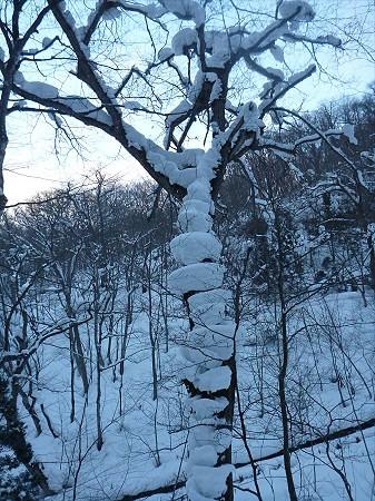 不動の滝へ!28(2013.1.30)