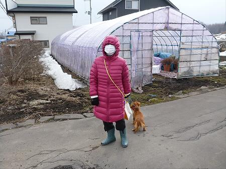 犬小屋スリー01(2013.3.18)