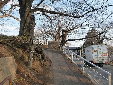 高松公園の桜01(2013.4.9)