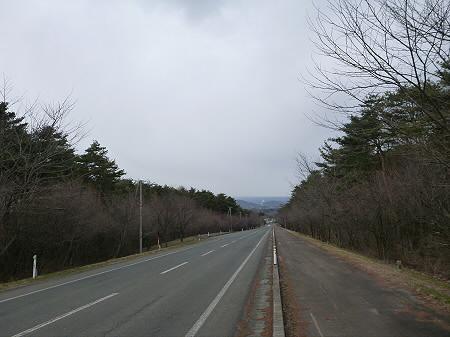 上坊牧野入口付近の桜並木02(2013.4.11)