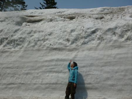 八甲田山の雪の回廊01(2013.4.14)