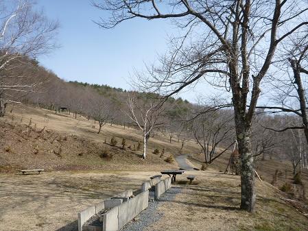 桜松公園の桜05(2013.4.16)