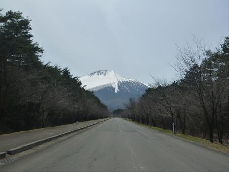 上坊手前の桜01(2013.4.16)