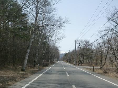 明治百年記念公園の桜01(2013.4.16)