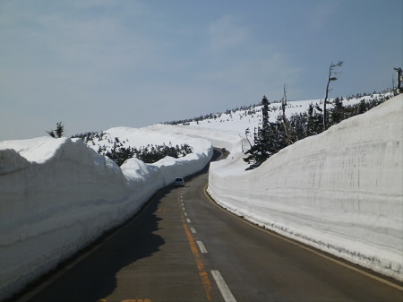 雪の回廊秋田03(2013.4.29)