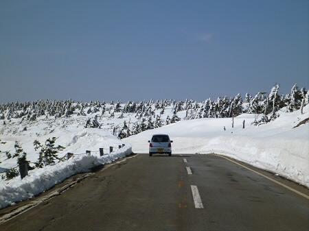 雪の回廊秋田06(2013.4.29)
