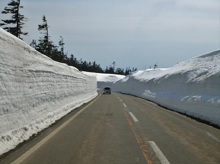 雪の回廊秋田10(2013.4.29)