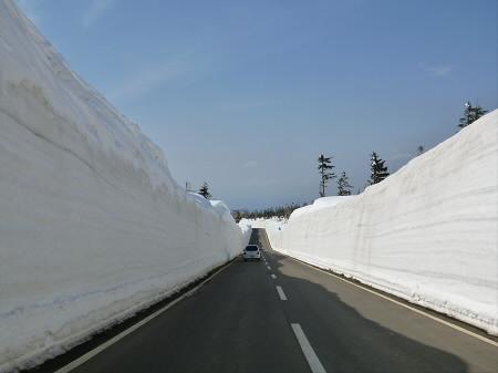 雪の回廊秋田11(2013.4.29)