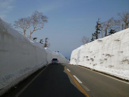 雪の回廊秋田12(2013.4.29)