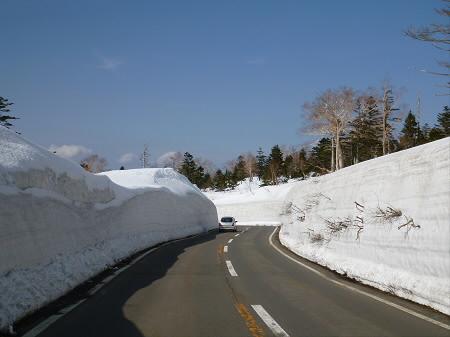 雪の回廊秋田14(2013.4.29)