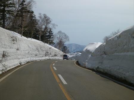雪の回廊秋田15(2013.4.29)