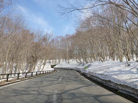 雪の回廊秋田19(2013.4.29)