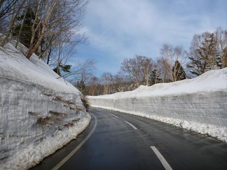 雪の回廊秋田22(2013.4.29)
