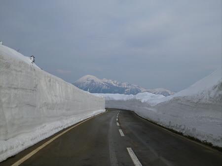 雪の回廊秋田31(2013.4.29)