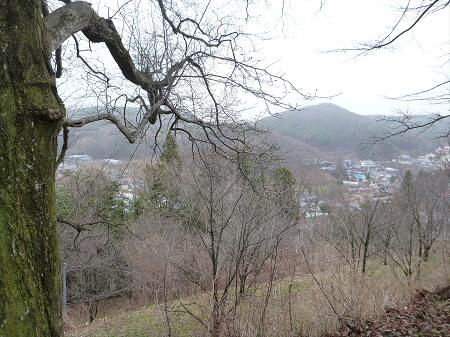 舘山公園の桜09(2013.4.19)