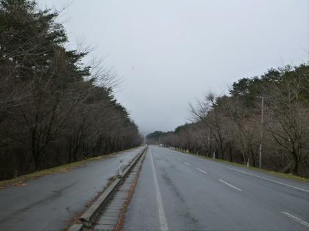 焼走り線の桜並木01(2013.4.19)