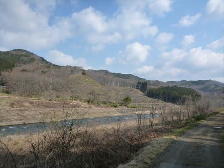安比川堤防の桜並木01(2013.4.23)