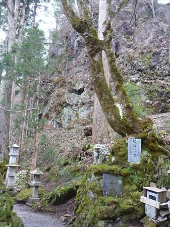 不動の滝11(2013.4.23)