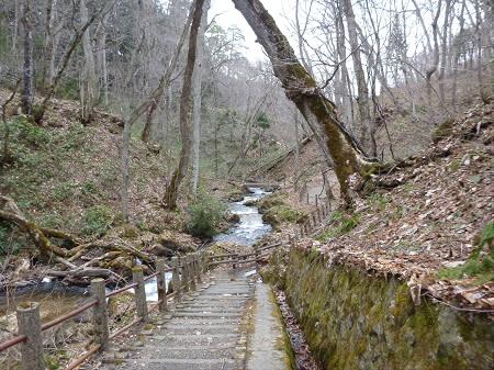 不動の滝15(2013.4.23)