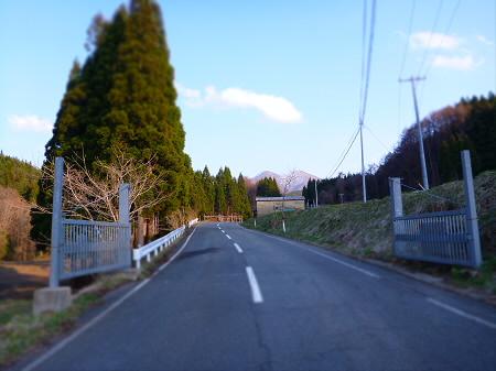 七時雨山の一本桜02(2013.4.25)