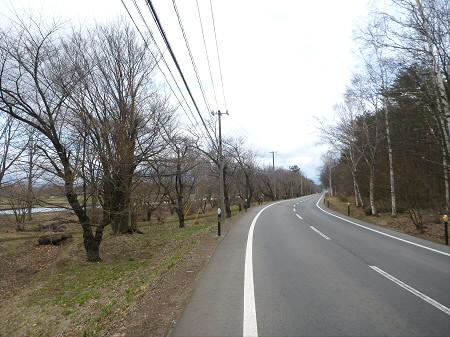 明治百年記念公園の桜01(2013.4.27)