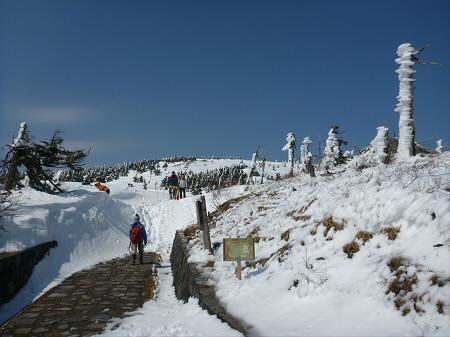 八幡平山頂付近14(2013.4.29)