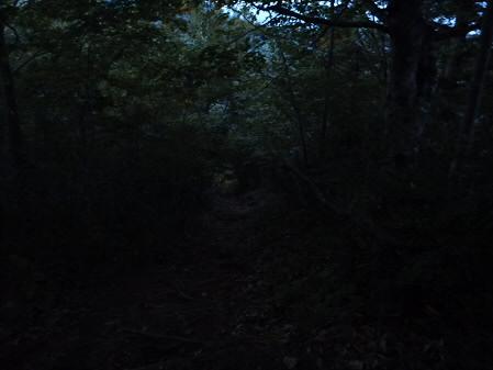三ツ石紅葉48(2013.9.28)