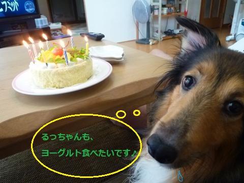 美羽7歳Birthday4