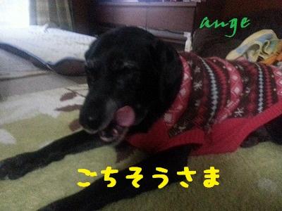 20140109ange2.jpg