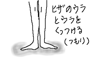 snap_mariyakko_2013105507.jpg