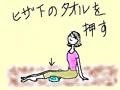 snap_mariyakko_201362211017.jpg