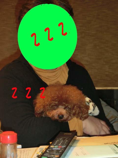 1月11日画像2