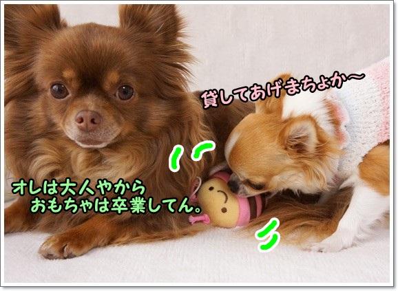 DSC08171_20130409230449.jpg