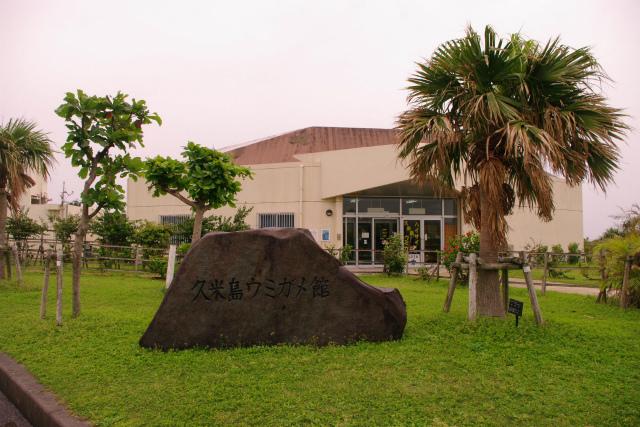 ウミガメ館