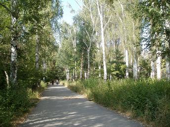 アタトルク公園のコース